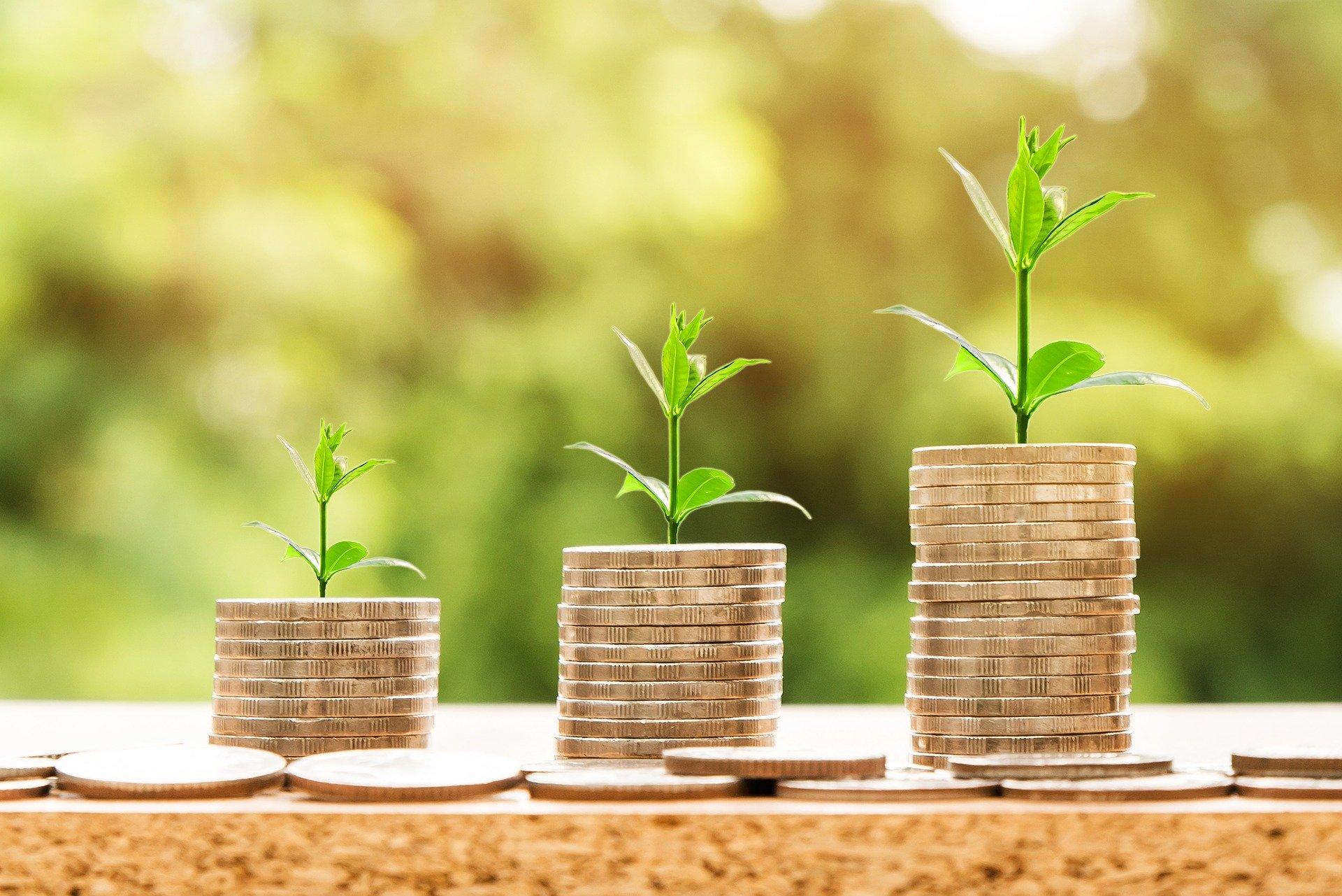 Return on Assets, Rule of 40
