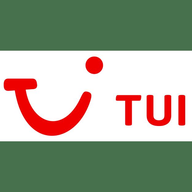 TUI - Bilanzanalyse - Aktienanalyse