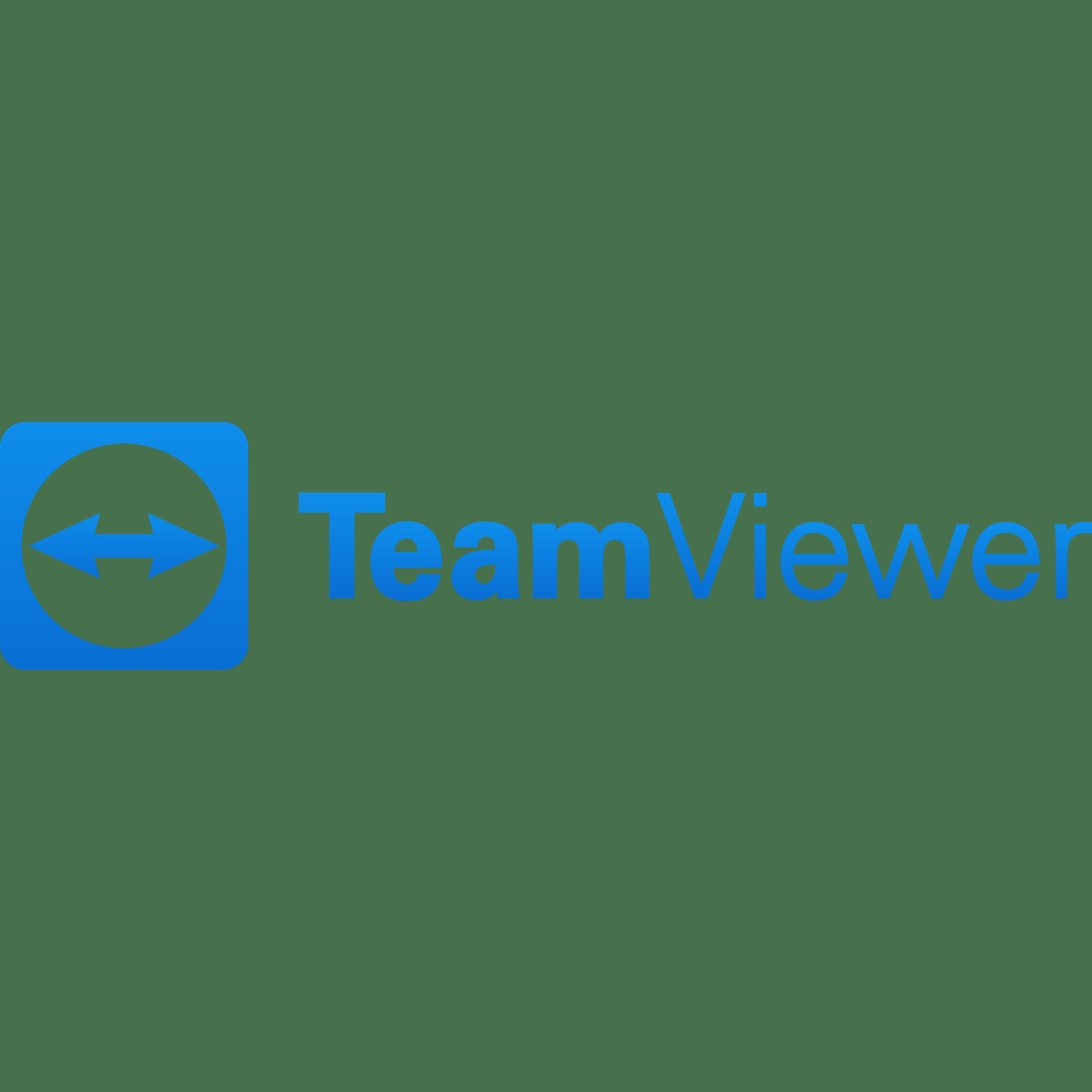 TeamViewer Aktienanalyse | Bilanzanalyse - Fundamentale Aktienanalyse