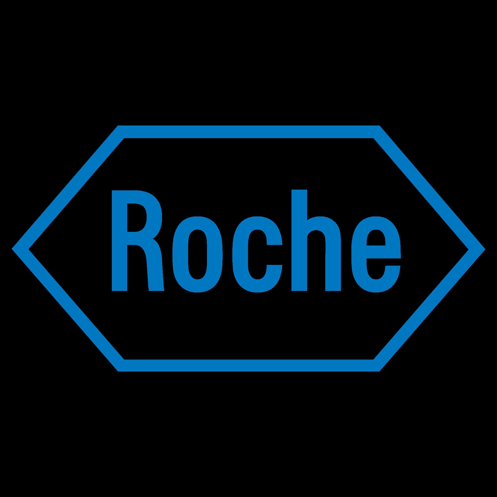 Die fundamentale Aktienanalyse von Roche