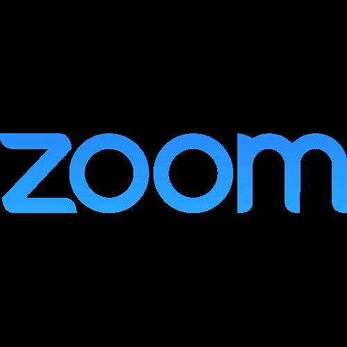Zoom   Fundamentale Aktienanalyse