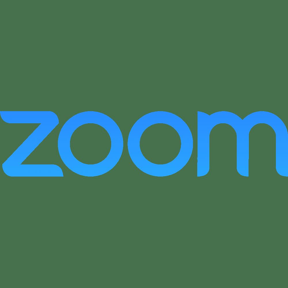 Zoom | Fundamentale Aktienanalyse